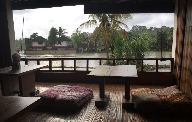 Restaurant by rice fields, Ubud, Bali